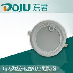 鑫昇华光电(图)|感应筒灯|山西感应筒灯图片