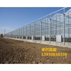 天津智能温室、卓尔阳光板、阳光板智能温室图片