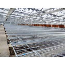 宜良蔬菜移动苗床-宜良蔬菜移动苗床-宏阳温室大棚批发