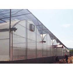 玉溪蔬菜钢架大棚搭建-玉溪蔬菜钢架大棚-宏阳温室大棚图片
