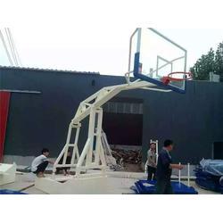仿液压篮球架订制|天健体育(在线咨询)|崇左篮球架图片