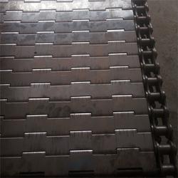 温州不锈钢链板-德雷克(在线咨询)不锈钢链板直销图片