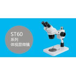 厦门工业显微镜|领卓|显微镜图片