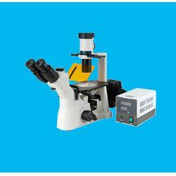 倒置荧光显微镜-宁德荧光显微镜-领卓(查看)图片