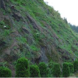 东川丝网(图)-边坡防护网生产-大同边坡防护网价格
