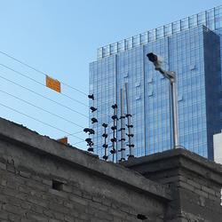 电子围栏|合洲电子围栏|石家庄合洲(优质商家)图片