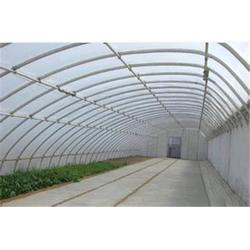 温室大棚qy8千亿国际官网_陕西温室大棚_通达农业图片