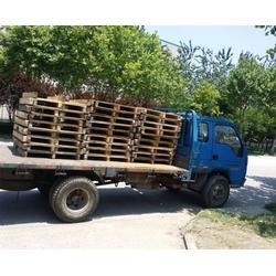 合肥二手木托盘、合肥松滋、二手木托盘加工厂家图片
