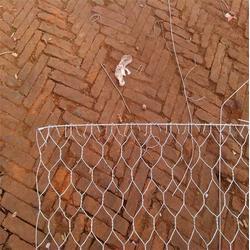 天阔筛网(图)_电焊石笼网_鹤壁电焊石笼网图片
