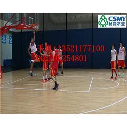 甲级 体育木地板篮球木地板设计图片