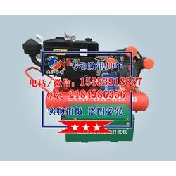 JJSL-200mm打桩机厂家、气动打桩机规格图片