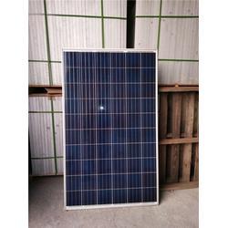 310W太阳能板回收-回收-亿韵汇光伏图片
