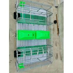 福宇养猪设备公司(图),母猪产床安装方法,邢台母猪产床图片