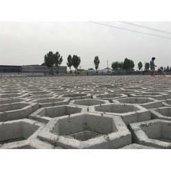 透水砖厂家、唐山透水砖、玉田县长旺建材图片