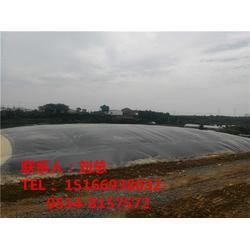沼液池、沼液池、德旭达土工材料(查看)图片