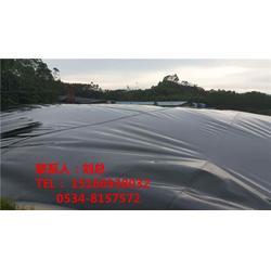 沼气池施工方案|德旭达土工材料(在线咨询)|沼气池图片