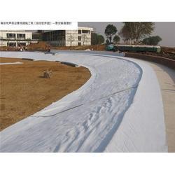 防水毯、德旭達土工材料、防水毯防水絕辦法圖片