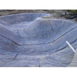 膨润土防水毯 检测标准-上海防水毯-德旭达土工材料(查看)图片