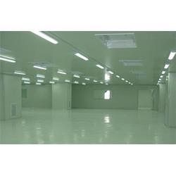 新势力光电(图)-净化灯-净化灯图片