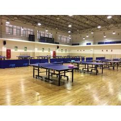 广州乒乓球木地板,乒乓球木地板生产商,睿聪体育设施图片