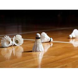 淄博羽毛球馆木地板_羽毛球馆木地板需要日常维护吗?_睿聪体育图片