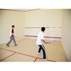 三门峡壁球馆木地板、睿聪体育、壁球馆木地板的发展状况图片