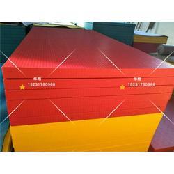 柔道垫厂家_专业柔道垫出口柔道训练比赛垫子_柔道垫图片