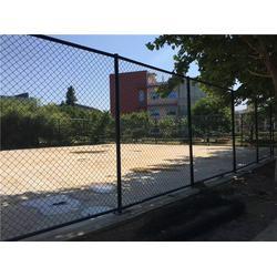球场围栏 河北霸鑫丝网 球场围栏参数