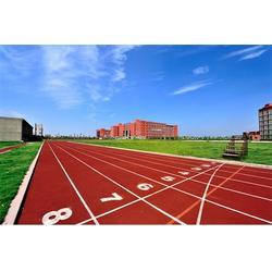 天津塑胶跑道厂家、塑胶跑道、奥琦体育图片