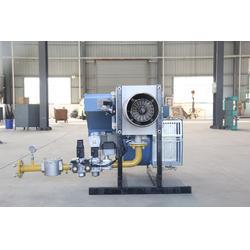 低氮燃烧器|江苏交阳热能|西藏低氮燃烧器图片