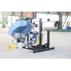 西藏低氮燃烧器生产厂家、低氮燃烧器、江苏交阳热能(查看)图片