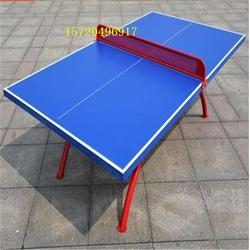 彩虹腿乒乓球台行情-嘉时体育-厦门彩虹腿乒乓球台图片