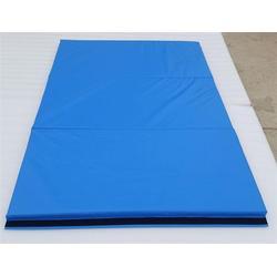 文山武术垫子手提垫供应-嘉时体育(在线咨询)图片