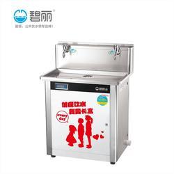 碧丽饮水机冰热和温热的区别、江门碧丽饮水机、碧丽饮水机图片