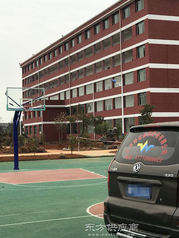 南昌篮球架,篮球架epmd地面,特冠体育(优质商家)图片