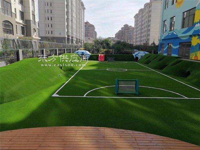 篮球架硅pu地面|特冠体育(在线咨询)|萍乡篮球架图片