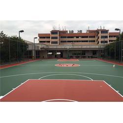 乒乓球台篮球架、南昌篮球架、篮球架精选特冠体育图片