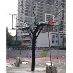 吉安市籃球架-籃球架優選特冠體育-籃球架硅pu籃球場圖片