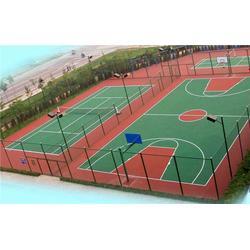 硅pu球場-特冠體育(在線咨詢)南昌硅pu圖片