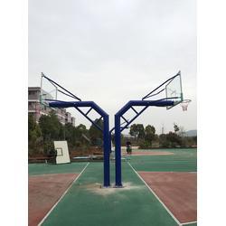 吉安市篮球架-移动式篮球架-特冠体育(优质商家)图片