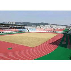 吉安健身器材|健身器材优选特冠体育|健身器材球场地面图片