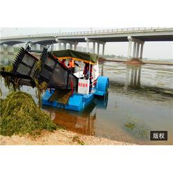 河道水浮莲打捞船-福建水浮莲打捞船-青州青山商贸(查看)图片