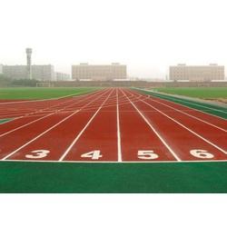 塑胶跑道、新洲跑道、睿天科技公司(查看)图片