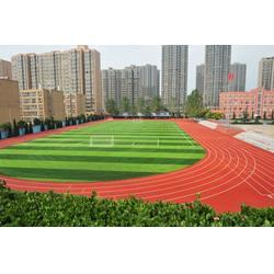 塑胶跑道-武汉睿天科技公司-塑胶跑道施工图片