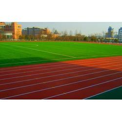 塑胶跑道施工-塑胶跑道-武汉睿天科技公司(查看)图片