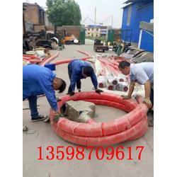昨天20米吸水稻散粮装车入库软蛟龙德邦发货图片