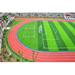 塑胶跑道品牌-宏山体育(在线咨询)怒江塑胶跑道图片