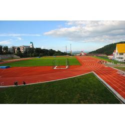 丽江PVC塑胶地板工程-丽江PVC塑胶地板-宏山体育(查看)图片
