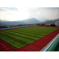 宏山体育(图)|丽江塑胶地板多少钱一平|丽江塑胶地板图片