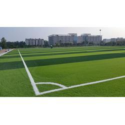 人造草足球场造价,宏山体育(在线咨询),永善人造草足球场图片